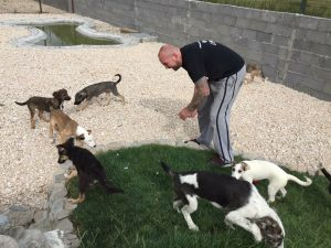 nEIL WITH rOMANIA DOGS